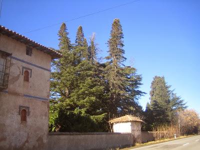 03 Daroca Torre Campillo 001