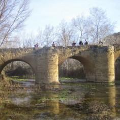 Puente. Luna