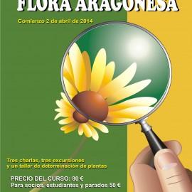 Botánica. CURSO DE INICIACIÓN A LA BOTÁNICA
