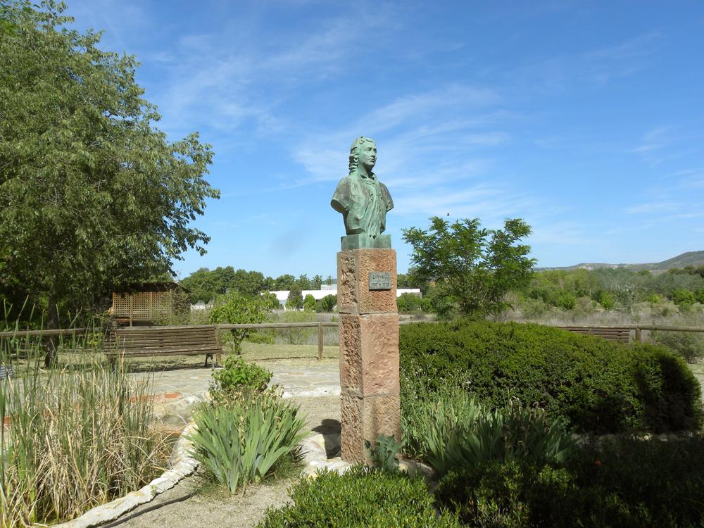 Bot nica visita al jard n bot nico de alcal de henares for Cementerio jardin de alcala de henares