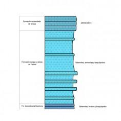 Secuencia estratigráfica de una parte del barranco de Bocafoz