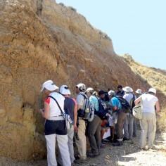 Mirando fósiles en la Formación de Turmiel