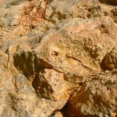 Dolomias-de-la-Formación-Carniolas-Cortes-de-Tajuña-Bco-de-Bocafoz-