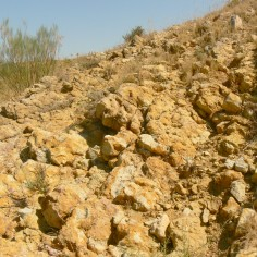 Formación-calizas-bioclásticas-de-Barahona-Jurásico-Inferior-Bco-de-Bocafoz