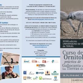 Curso de ornitología práctica de Gallocanta y las Tierras del Jiloca