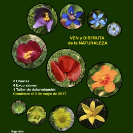 Botánica. VI CURSO DE INICIACIÓN A LA FLORA DE ARAGÓN