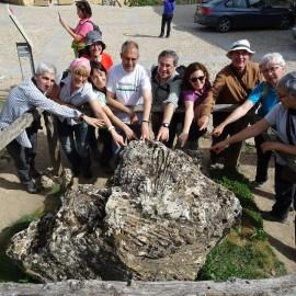 Geología. Resumen geológico del viaje a Salamanca