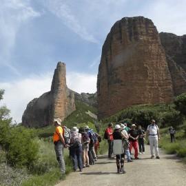 BOTANICA: TRAVESÍA RIGLOS-AGÜERO (Huesca)