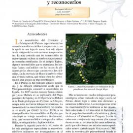 GEOLOGÍA. Los microfósiles del Prepirineo de Arguis