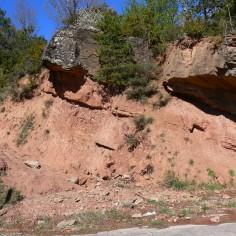15 Formación Campodarbe, al otro lado del tunel de la Manzanera (3ª parada)