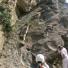 24 Viendo los ripples en la Fm Areniscas-de-Sabiñanigo. Yebra de Basa (6ª parada)