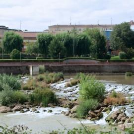 El agua y los peces del Ebro, altamente contaminados