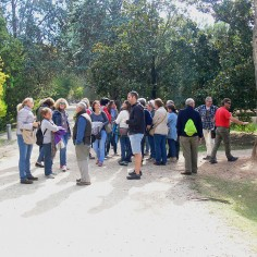 En el Jardín Botánico (4)