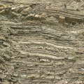 Carbonífero: Estratos y pequenas fallas