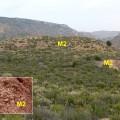 Muschelkalk (M2) tramo de lutitas, yesos y margas