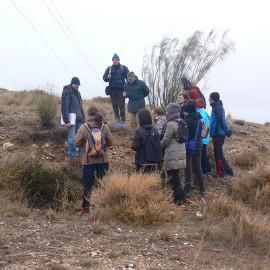 GEOLOGÍA. LAS TERRAZAS DEL EBRO EN ZARAGOZA