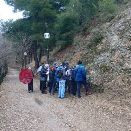 Geología. Terrazas del Huerva y Ebro