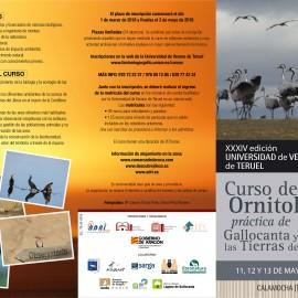 Curso de Ornitología en Gallocanta