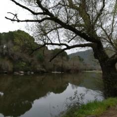 Río Jandula