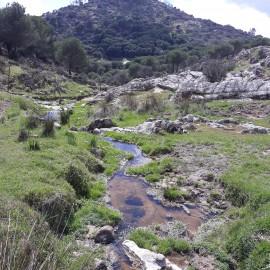 Viaje a la Sierra de Andújar (Jaén)