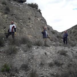 Repoblación forestal en colaboración con el Club de Tiro con Arco de Alfajarín