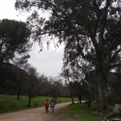 Presa de Encinarejo