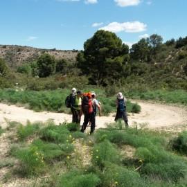 BOTÁNICA. Excursión a la Serreta Negra de Fraga