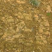 Basaltos del Pérmico