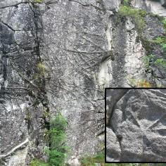 23.-  Nerviaciones en la granodiorita. Panticosa