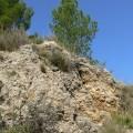 14 Formación Barahona río Ancho