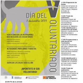 INTERESANTES ACTIVIDADES EN EL MUSEO DE CIENCIAS NATURALES.DÍA DEL VOLUNTARIADO