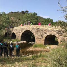 Arroyo de la Vid