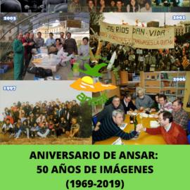 50 Años de imágenes