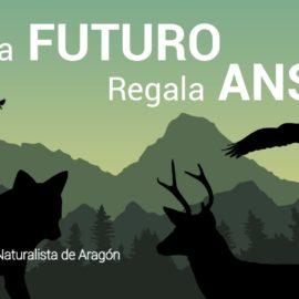Tarjeta «REGALA FUTURO, REGALA ANSAR»