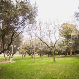 Jardín Botánico «El Olivar»