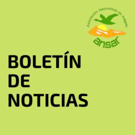 BOLETÍN DE NOTICIAS (4ª semana abril)