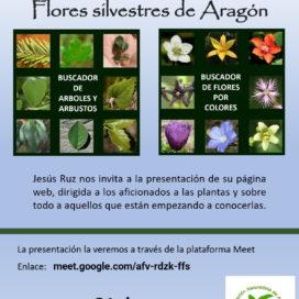 Charla/Presentación de la página web «Las Flores silvestres de Aragón»