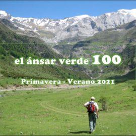 ANSAR Verde 100